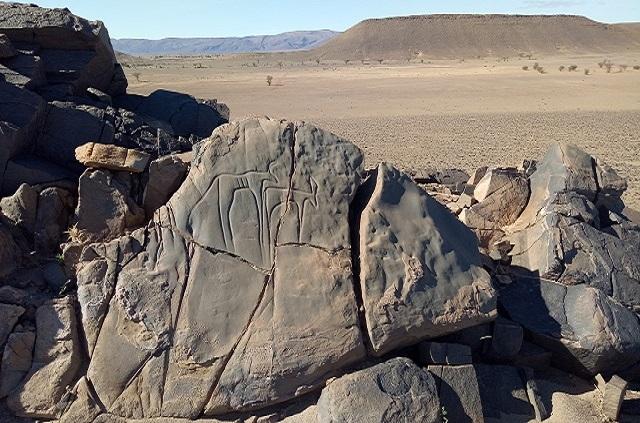 Gravures rupestres du sud maroc