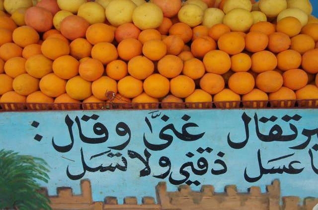 Oranges de la région de Taroudant
