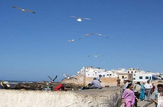 Mogador, excursion à Essaouira
