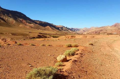Piste du sud marocain