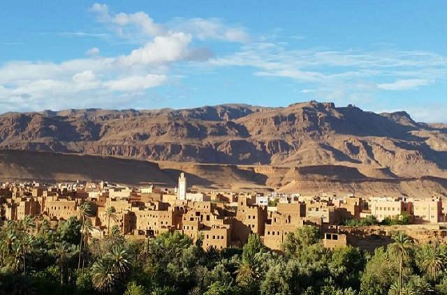 Palmeraie de Tineghir au Maroc