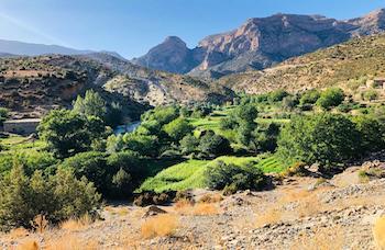 Verdure vallée Ahansal